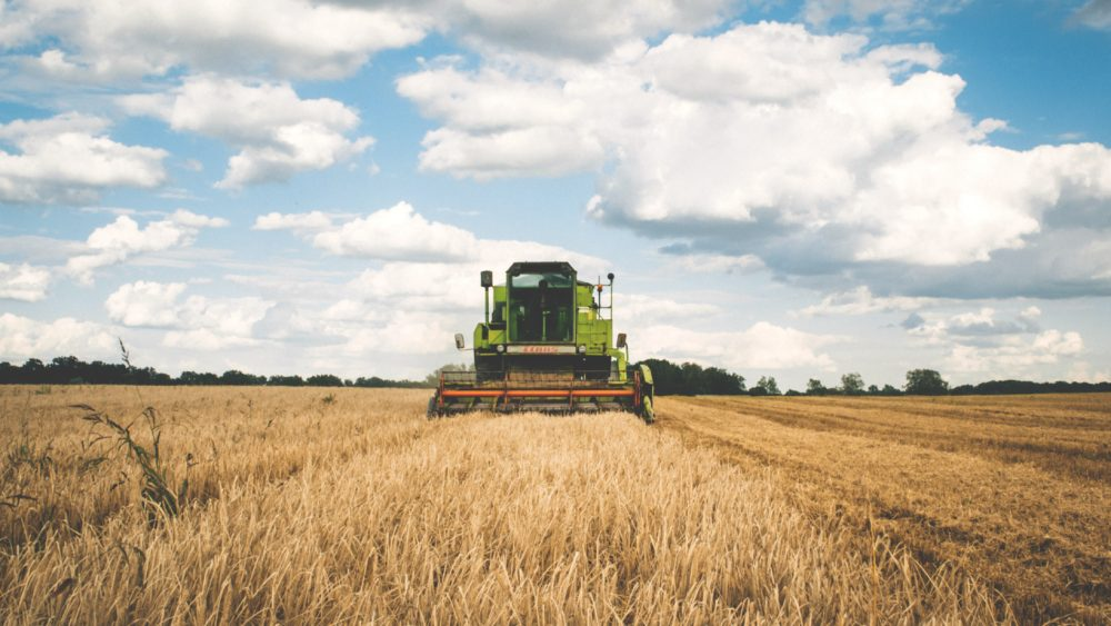 A machine harvesting wheat on a farm.